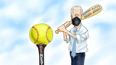 Photo of Softballs – A.F. Branco Cartoon