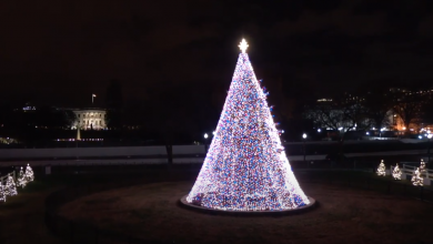 Photo of Watch: President Trump and First Lady Participate in 2020 National Christmas Tree Lighting Ceremony