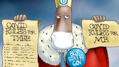 Photo of Royal Sham – A.F. Branco Cartoon